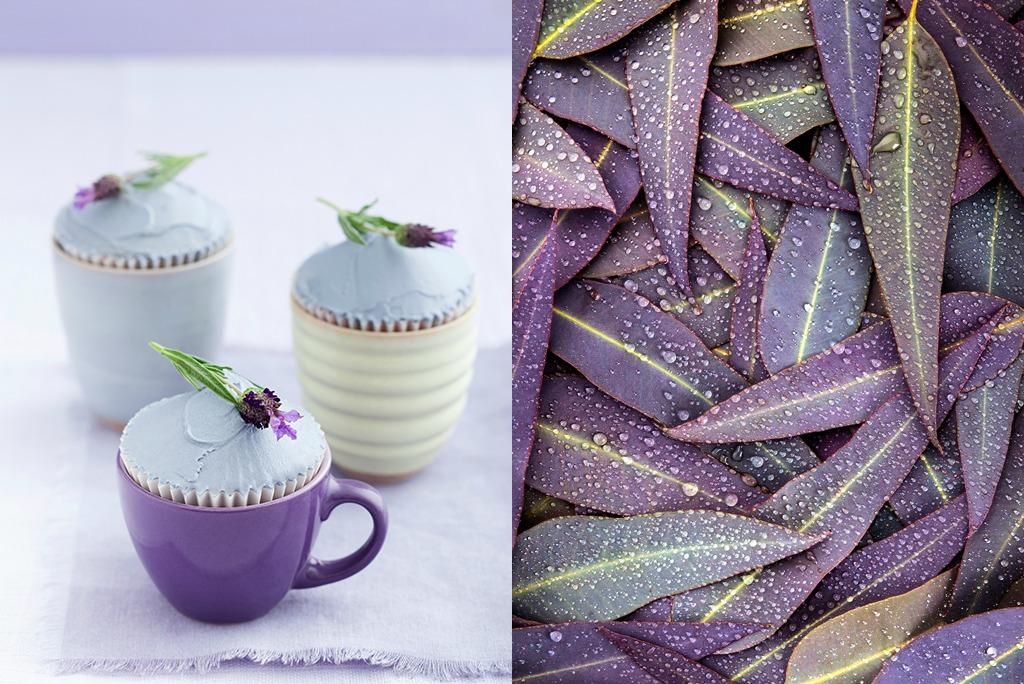 Fotocollage mit violetten Cupcakes und violetten Blättern
