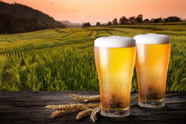zwei Biergläser
