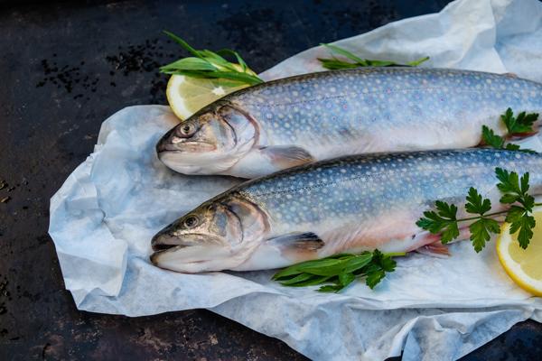 Fischkurs EMME